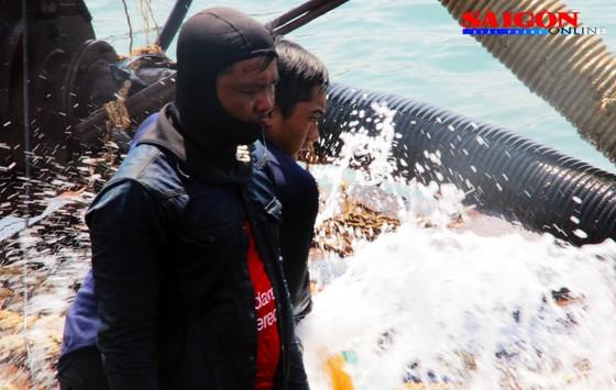 Cận cảnh thợ lặn ngâm mình giữa biển, tìm cách lặn vào khoang tàu đắm ảnh 4