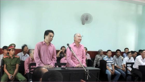 """Trả hồ sơ, điều tra bổ sung """"đại án"""" phá rừng Bình Định: ảnh 1"""