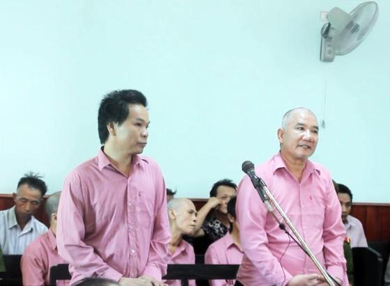 """Trả hồ sơ, điều tra bổ sung """"đại án"""" phá rừng Bình Định: ảnh 3"""
