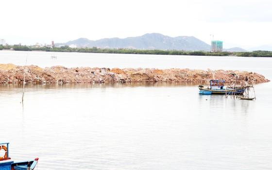 Doanh nghiệp ngang nhiên đổ đất, đá...lấp đầm Thị Nại bị phạt 300 triệu đồng ảnh 1
