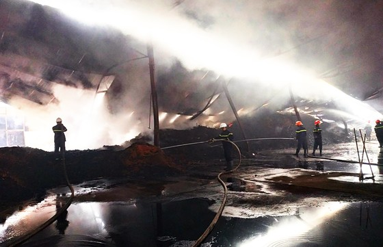 Xưởng gỗ dăm, viên nén sinh học bốc cháy từ sáng đến chiều ảnh 2