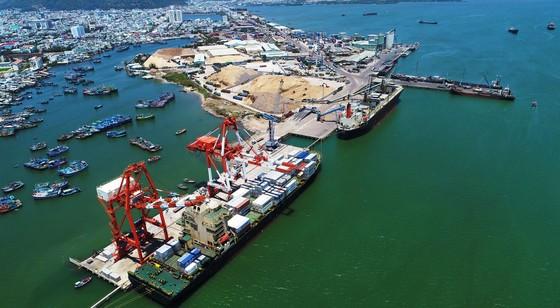 Cận cảnh tấn hàng thứ 8 triệu thông cảng Quy Nhơn. ảnh 7