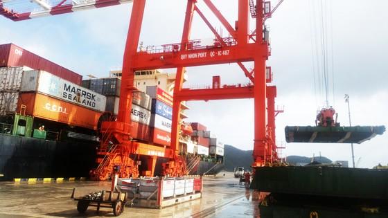 Cận cảnh tấn hàng thứ 8 triệu thông cảng Quy Nhơn. ảnh 5