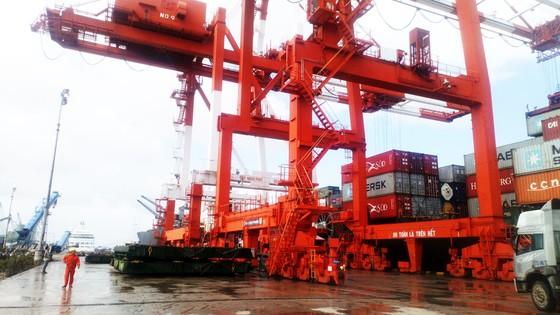 Cận cảnh tấn hàng thứ 8 triệu thông cảng Quy Nhơn. ảnh 6