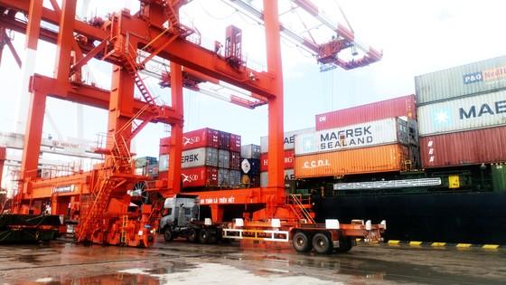 Cận cảnh tấn hàng thứ 8 triệu thông cảng Quy Nhơn. ảnh 1