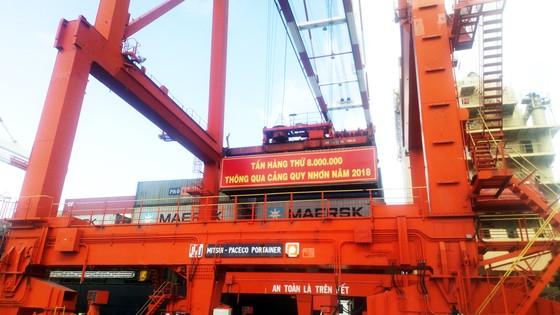 Cận cảnh tấn hàng thứ 8 triệu thông cảng Quy Nhơn. ảnh 2
