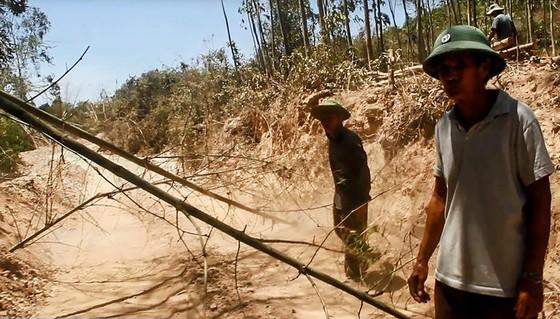 """""""Đất tặc"""" lộng hành đào phá núi Mò O ảnh 2"""