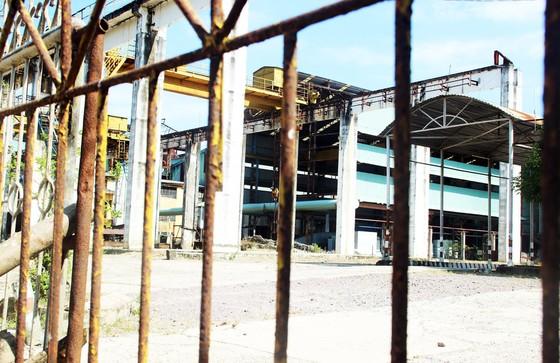 """Khối tài sản của ông chủ BISUCO để lại ở Bình Định rồi """"tẩu thoát"""" ảnh 11"""