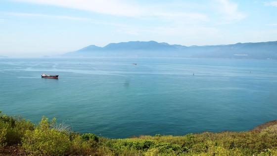 Đề xuất nhận chìm 300.000m³ bùn nạo vét luồng cảng Quy Nhơn xuống biển ảnh 2
