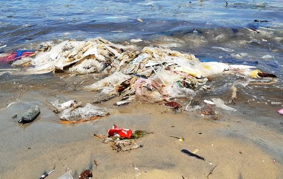 """Cận cảnh bãi biển đẹp như tranh bị """"đầu độc"""" bởi rác thải ảnh 4"""
