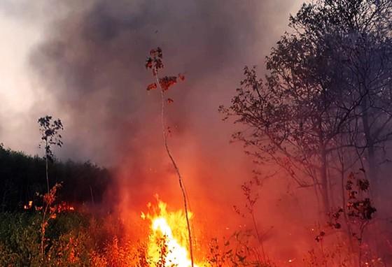 Hơn 2 ngày chiến đấu cật lực với lửa lớn ở núi Kỳ Lễ ảnh 2