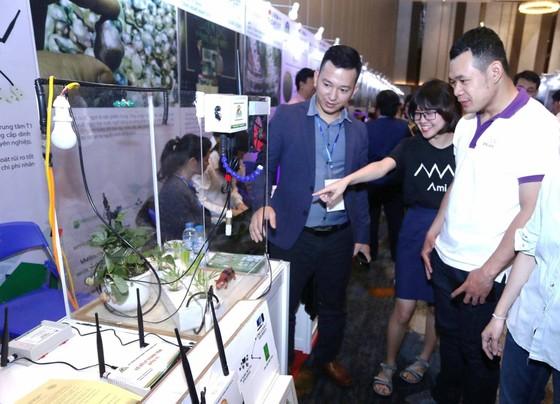 Phát triển hệ sinh thái địa phương gắn với các sản phẩm bản địa ảnh 1