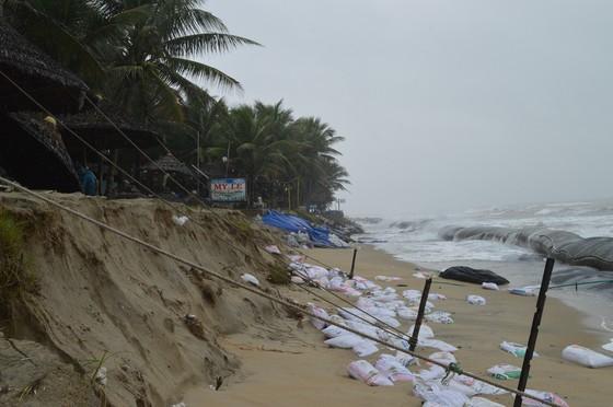 Bờ biển Đà Nẵng, Quảng Nam sạt lở nghiêm trọng do mưa to, gió lớn ảnh 6