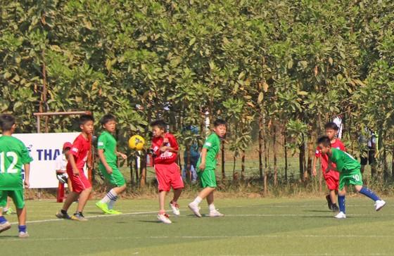Đà Nẵng khai mạc giải bóng đá học đường lần thứ nhất ảnh 1