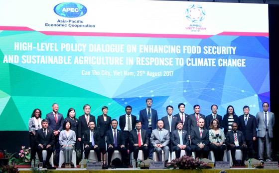 Đối thoại cao cấp về An ninh lương thực và Nông nghiệp bền vững  ảnh 1