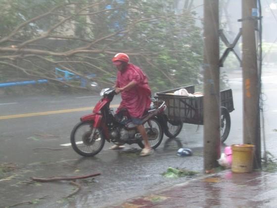 Vũng Tàu - Bến Tre mưa lớn, gió giật mạnh, Khánh Hòa - Ninh Thuận ngập lụt, đường sắt tê liệt  ảnh 6