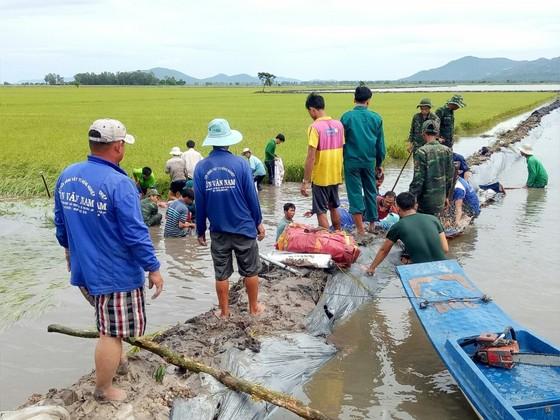 ĐBSCL khẩn cấp gặt lúa chạy lũ ở vùng biên giới  ảnh 3