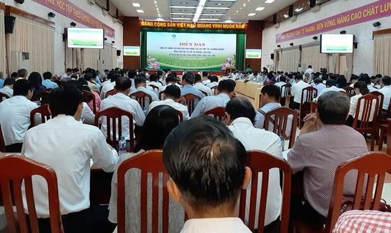 ĐBSCL: Hơn 230.000 người tham gia HTX Nông nghiệp ảnh 1
