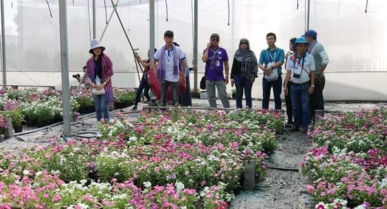 Phát triển bền vững du lịch nông nghiệp tại ĐBSCL ảnh 3