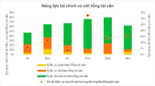 Đất Xanh tăng trưởng lợi nhuận kép 55%/năm trong 10 năm ảnh 7