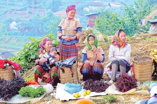 Đặc sắc chợ phiên Lào Cai ảnh 6