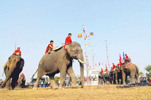 Độc đáo đua voi Buôn Đôn ảnh 3