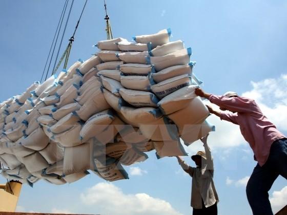 Mục tiêu xuất khẩu 165 tỷ USD gặp thách thức ảnh 1