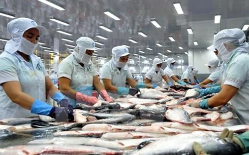 VASEP cảnh báo xuất khẩu cá tra sang Trung Quốc ảnh 1