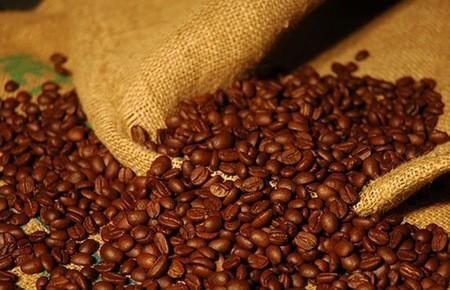Việt Nam xuất khẩu cà phê nhiều nhất thế giới ảnh 1
