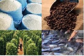 XK nông-lâm-thủy sản ước 18,1 tỷ USD ảnh 1