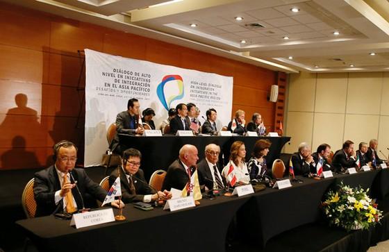 11 nước tìm cách cứu TPP ảnh 1