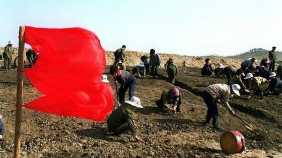 70% dân Triều Tiên sống nhờ lương thực viện trợ ảnh 1