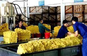 Xuất khẩu cao su: Không dễ loại tiểu ngạch ảnh 1