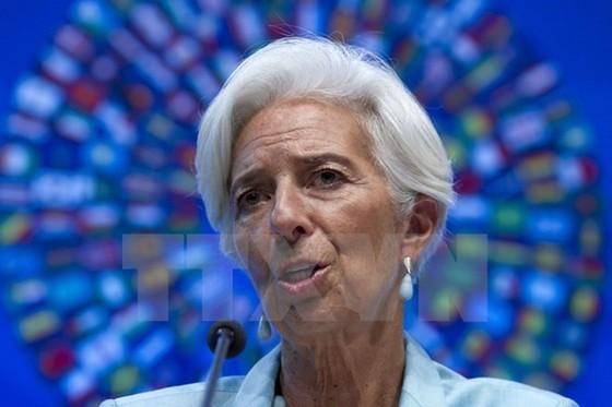 Giám đốc IMF ra tòa ảnh 1