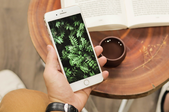 Chọn mua iPhone 7 Plus mới hay iPhone X cũ? ảnh 2