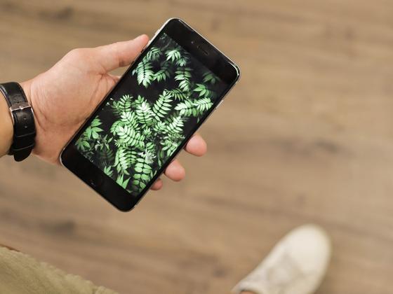 Mua iPhone 6S Plus giá chỉ 6,1 triệu, trúng vàng tại Di Động Việt ảnh 1
