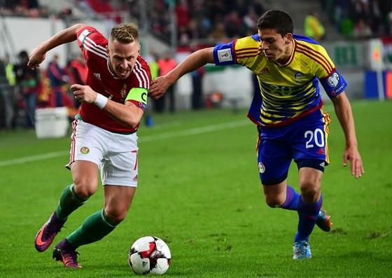 Hungary (trái) vẫn chưa thể giành bất kỳ một chiến thắng nào trước Nga