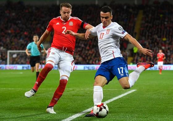Serbia (phải) chưa từng để thua một trận đấu nào trước xứ Wales.