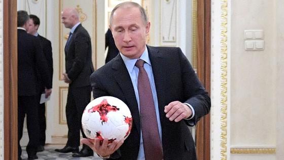 Tổng thống Putin sẽ dự khán trận Nga - New Zealand ảnh 1