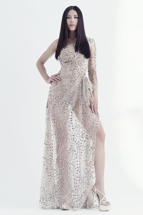 Nguyễn Thị Loan được đề cử tham dự Hoa hậu Hoàn vũ Thế giới 2017 ảnh 2