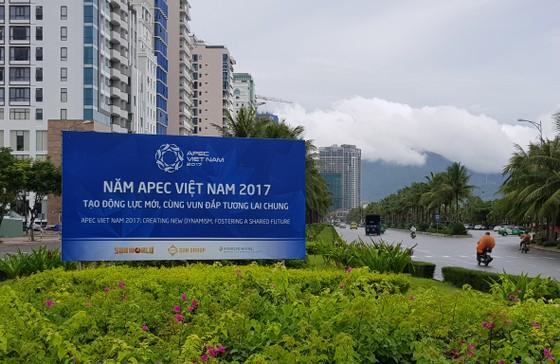 Đà Nẵng, Quảng Nam sẵn sàng cho APEC ảnh 3