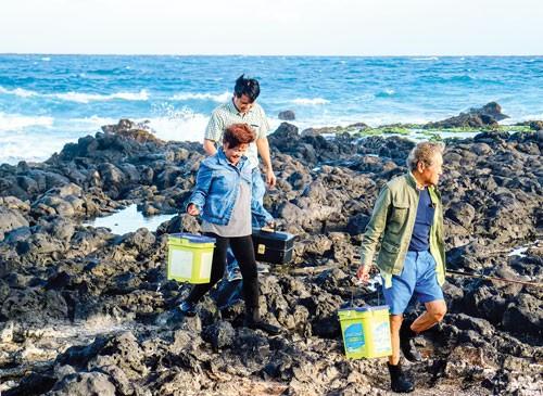 Hawaii Quyến rũ ảnh 7