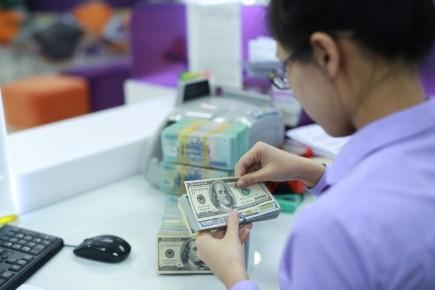 Kiều hối về TPHCM năm 2016 đạt 5 tỷ USD ảnh 1