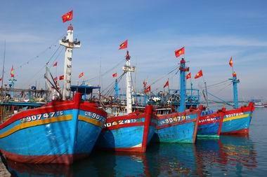Triển khai chính sách phát triển thủy sản đến hết 2017 ảnh 1