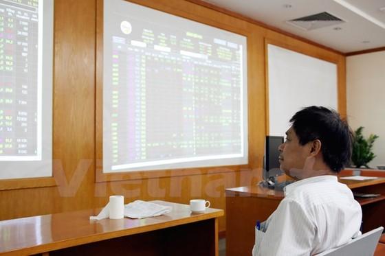 Cổ phiếu ROS, SAB lọt vào 'rổ' đại gia quỹ ETF ảnh 1