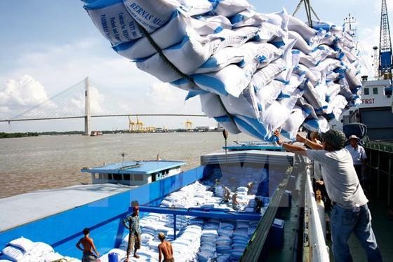 Gạo Việt chật vật phân khúc chất lượng cao ảnh 1