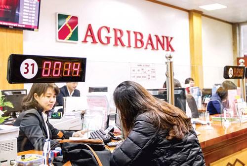 Agribank: Tạo nền tảng vững chắc GĐ phát triển mới ảnh 1