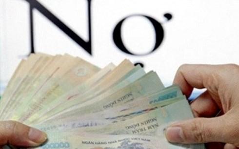 VAMC sẽ phát huy hiệu quả xử lý nợ xấu? ảnh 1