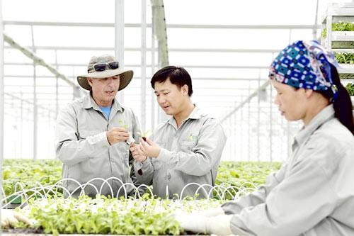 Đầu tư công nghệ cao cho nông nghiệp ảnh 1