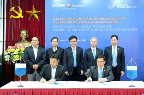 Bảo Việt Tokio Marine phát triển bảo hiểm nông nghiệp ảnh 1